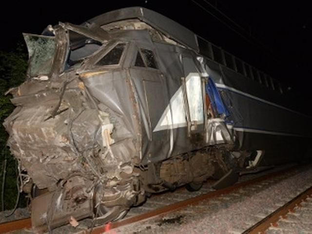 rats blamed for French rail crash