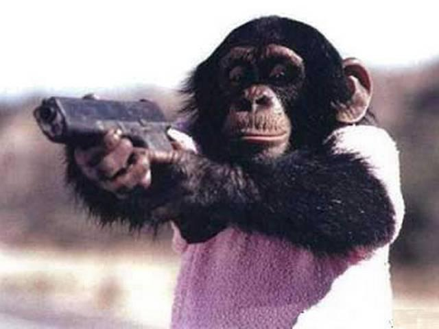_man _trained _as _apes _to _chase _monkeys _from _parliament