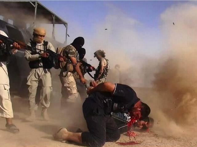 Seven other countries join US in arming Kurds against ISIL