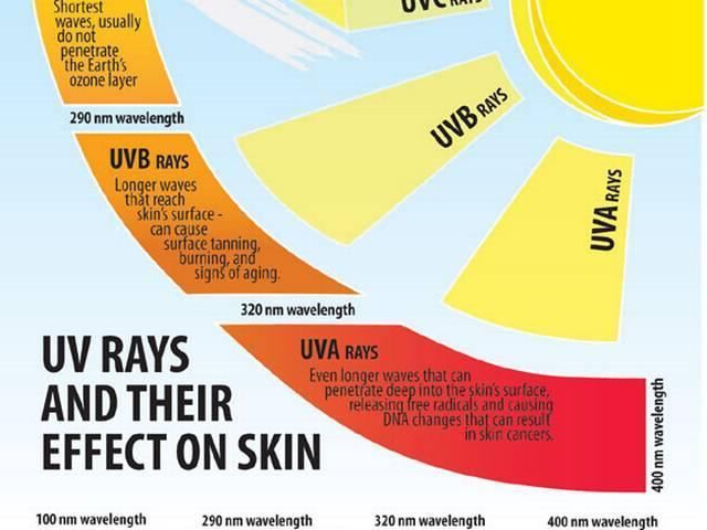 skin-rays