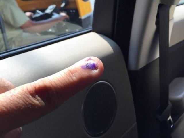 TV Stars Votes in Election