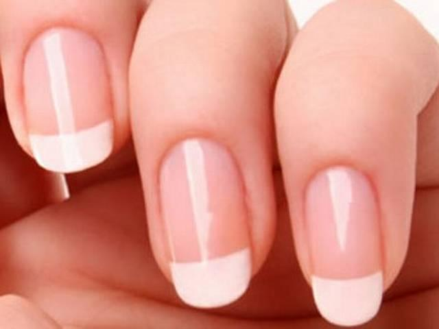 Can stem cells in nails 'guide' other body parts to re-grow?