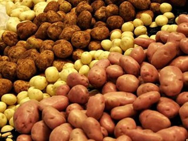 आलू उत्पादन में बिहार के किसान का विश्व रिकॉर्ड