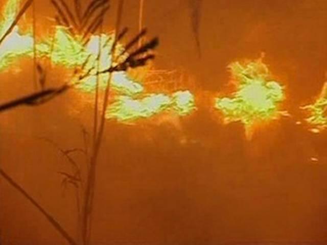 मुंबई: फिल्म सिटी के पास गोरेगांव के जंगलों में आग