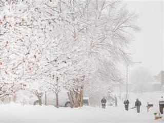 america-us-snow-emergency.jpg