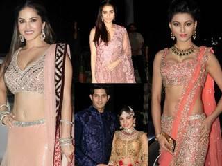 Wedding reception of Tulsi Kumar