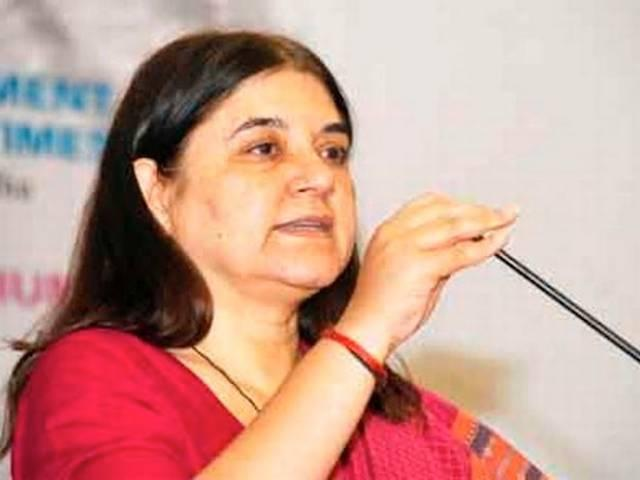 Maneka Gandhi suggests for surface cleaner from cow urine