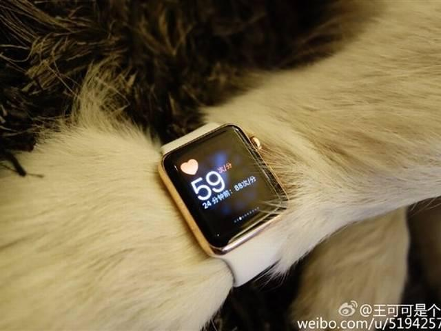 Chinese man buys two gold Apple Watch Editions for dog, prompts bizarre controversy