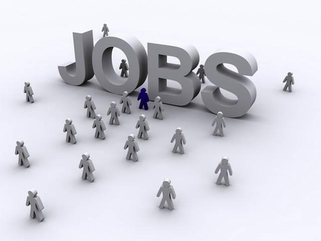 indian compnay offer jobs in usa
