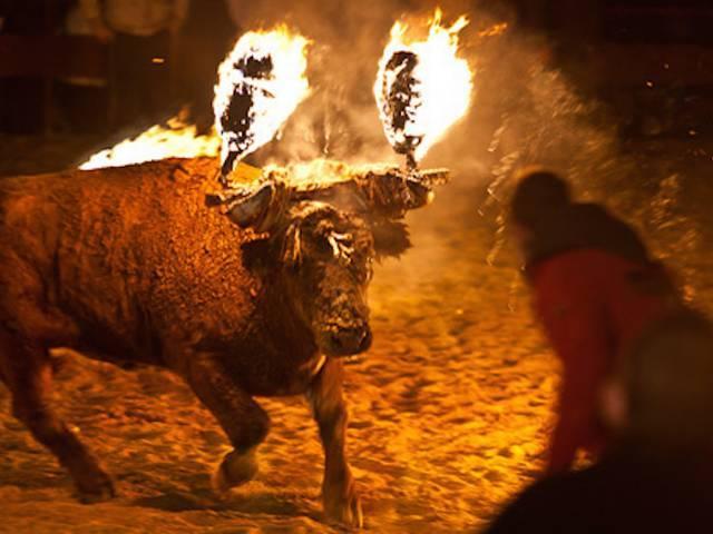 Spain_Bullfight