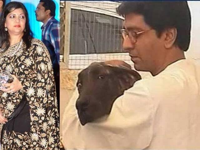 Raj Thackeray's wife gets 65 stitches after pet dog bites her