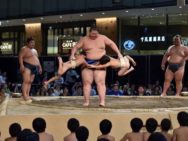 sumo-exhibition-japan