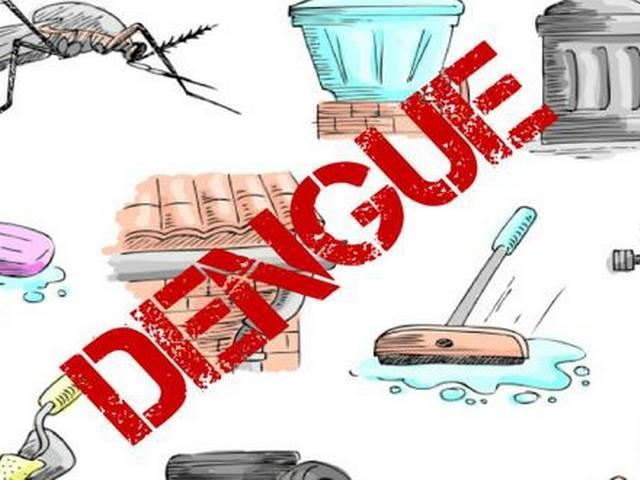 night lights can aggravate the risk of dengue