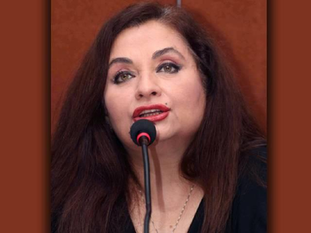 salma agha said it is very difficult to make a film on Homosexuality