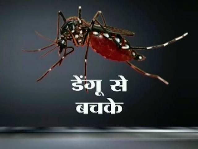 dengue attack in delhi