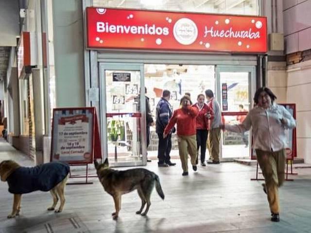 Chile earthquake: Powerful quake strikes Santiago