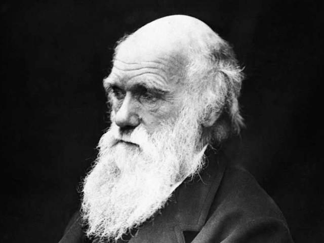 Charles Darwin's Letter on Bible, God Fetches $197,000 at Auction