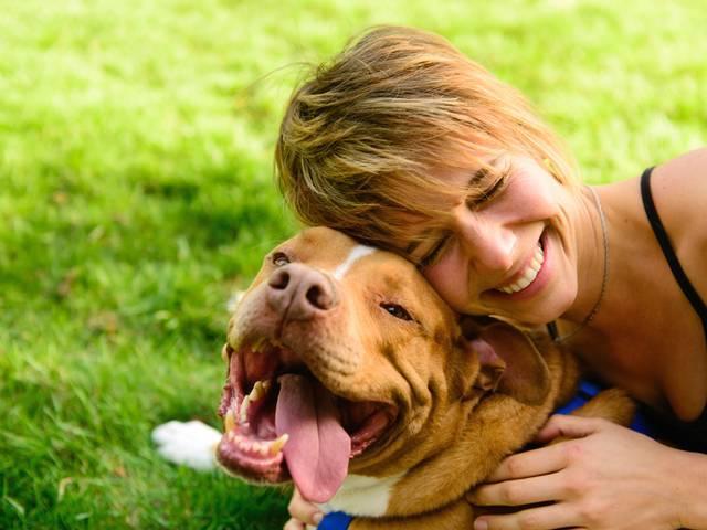 Can Pet Affection Improve Heart Health?