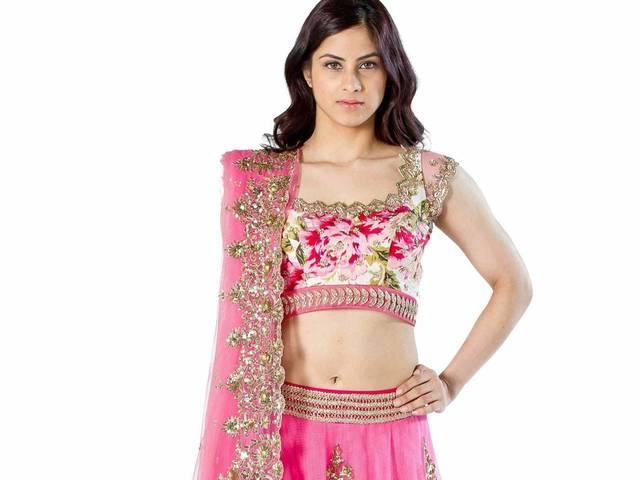 dress colours to wear on Navratri festival