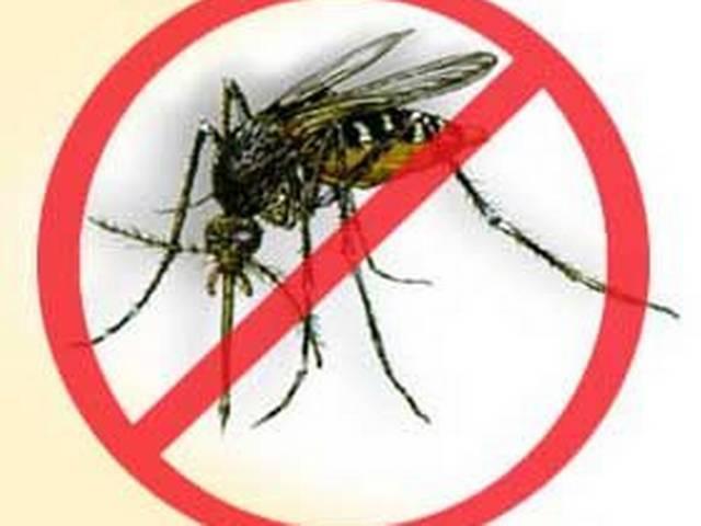 Over 10000 dengue cases in Delhi highest in 19 years
