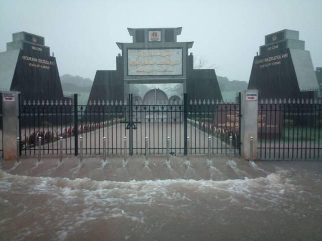 heavy rains cripple chennai