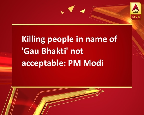 Killing people in name of 'Gau Bhakti' not acceptable: PM Modi