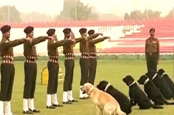 Police dog dies, five policemen suspended