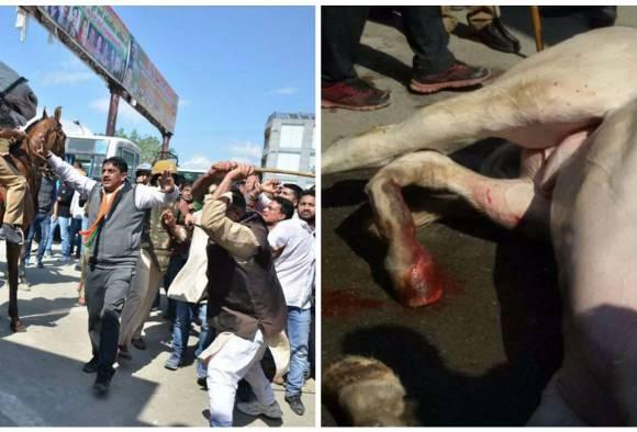 BJP MLA seen thrashing the horse. Image Courtesy: ABPLive