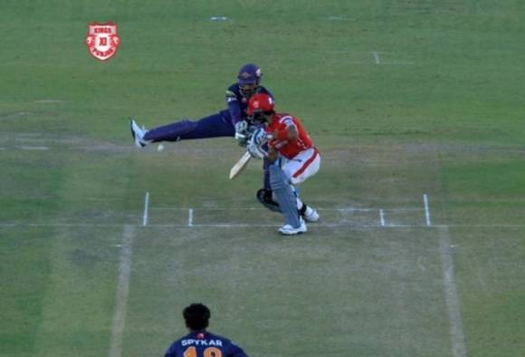 VIDEO: Why MS Dhoni is smartest wicket-keeper in the world ... Ms Dhoni Wicket Keeping Diving