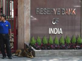 RBI keeps rate unchanged at 6.25 per cent