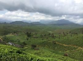 Dateline Nilgiris - Caste Vs Charisma in UP
