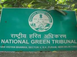 No political appointments in pollution control boards: NGT
