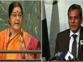 Sushma Swaraj disowned UN resolutions in speech: Pakistan