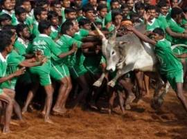 A.R.Rahman, Rajnikanth and Other Tamil celebrities Lend Support For Jallikattu