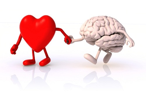 How Cholesterol Affects Your Brain and Heart Health