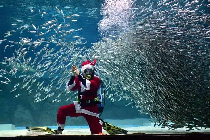 Santa Clause in the water
