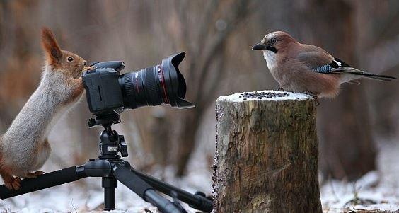 Russian photographer Vadim Trunov captured stunning images