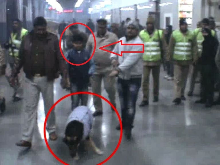 Muradabad police brings private dog instead of sniffer for search at railway station