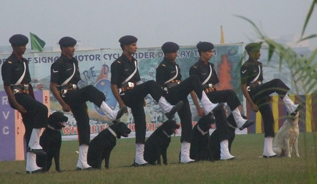 Indian Army Dogs Will Participate In The Republic Day Parade This Time After 26 Years!