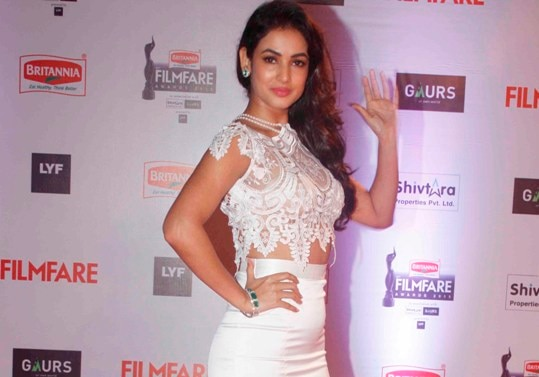 Filmfare Awards 2016: Actresses in hot dress