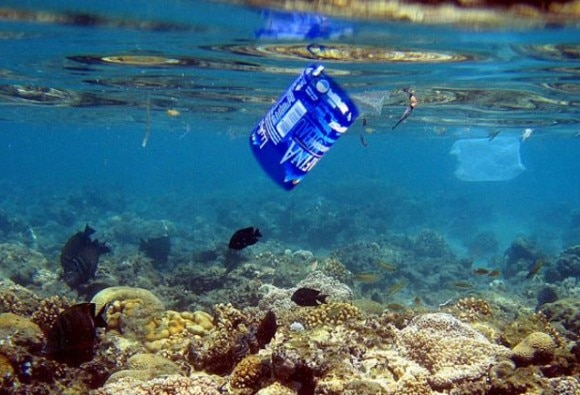 More plastic than fish in oceans by 2050