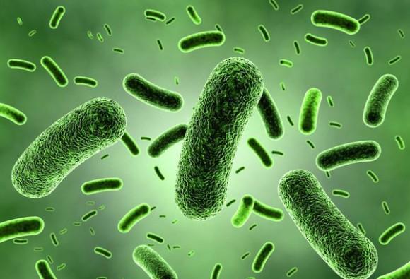 New sensor detects Bacteria