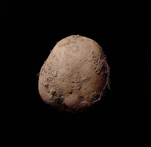 Photographer Kevin Abosch sells picture of a POTATO for £750,000