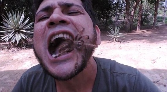 Brazilian man puts a live tarantula and bat in his mouth at the same time