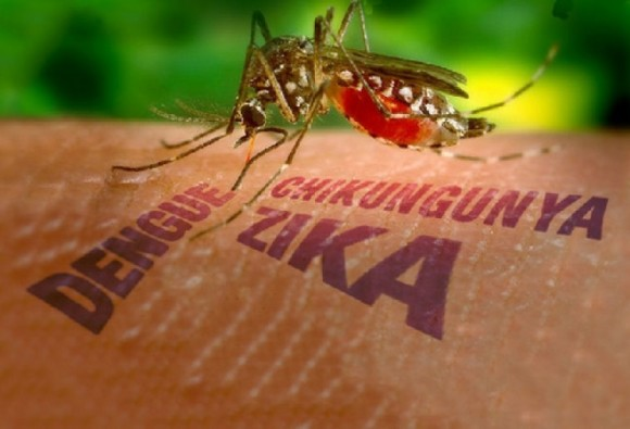 First sexually transmitted case of Zika virus is confirmed