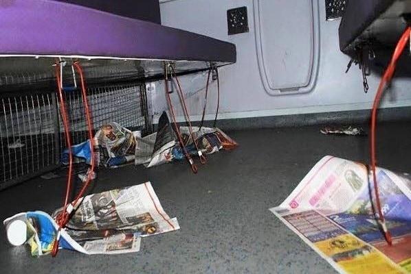 passengers screw mahamana express within days