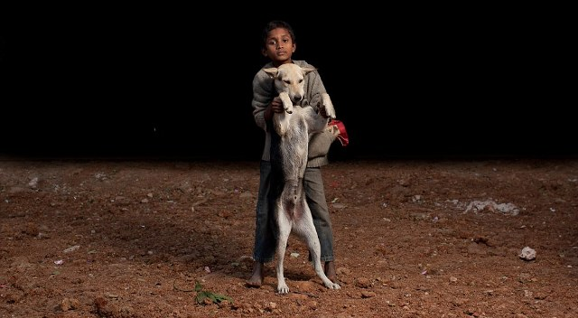 Orphaned children of Bangladesh form families with stray dogs