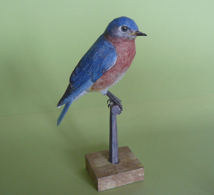 Create Realistic Birds From Paper