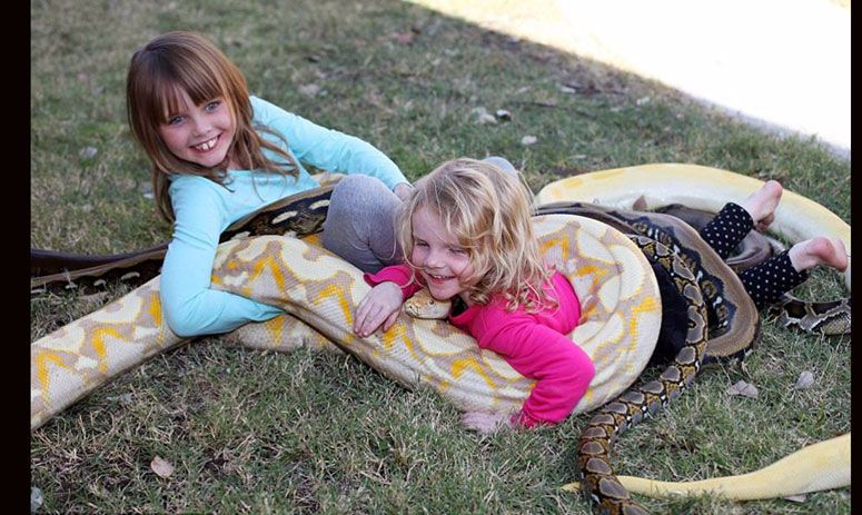 a family that has hundreds of snakes, crocodile, lizards as pet
