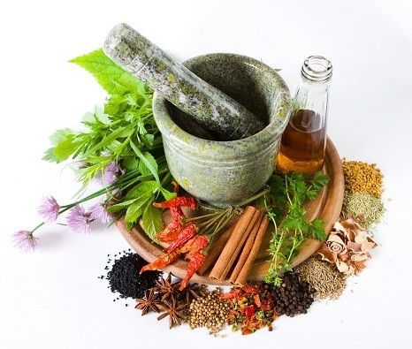The Essential Guide to Herbal Treatment